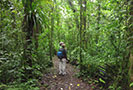 Hiking in Costa Rica