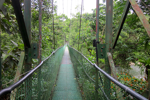 Hanging Bridge to Reserve