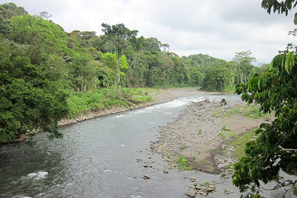 Sarapiqui River