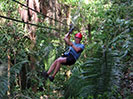 Ziplining through Jungle Canopy